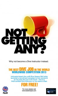 Best Dive Job – promo poster