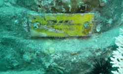 DHK plaques at Pilot reef